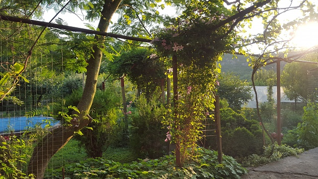 Galaxy S6 : Camera Shots!  Show us your pictures-20150626_200147.jpg