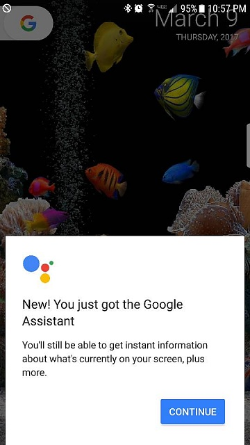 Has Your S7E Received Google Assistant?-558.jpg