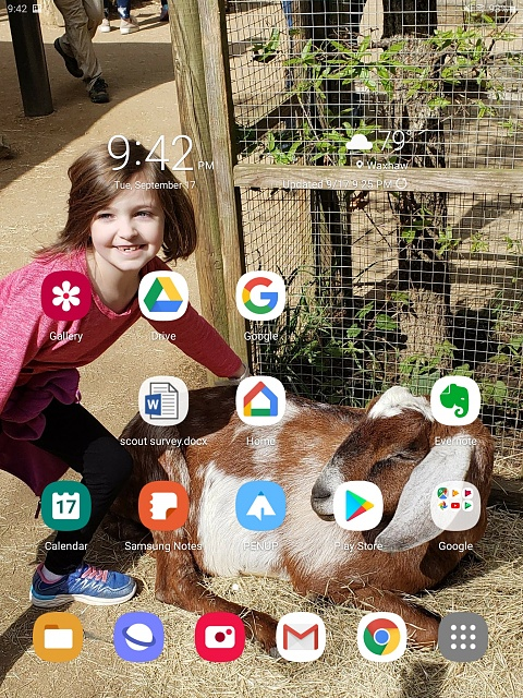 Anyone else have home screen issues with pie?-screenshot_20190917-214301_one-ui-home.jpg