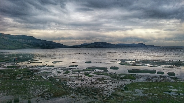 Sony Xperia Z3 Post Your Camera Pictures Here!-dsc_0094-01.jpg