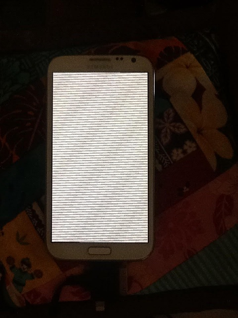 Phone will not turn on - pic of pixel screen included-unnamed.jpg